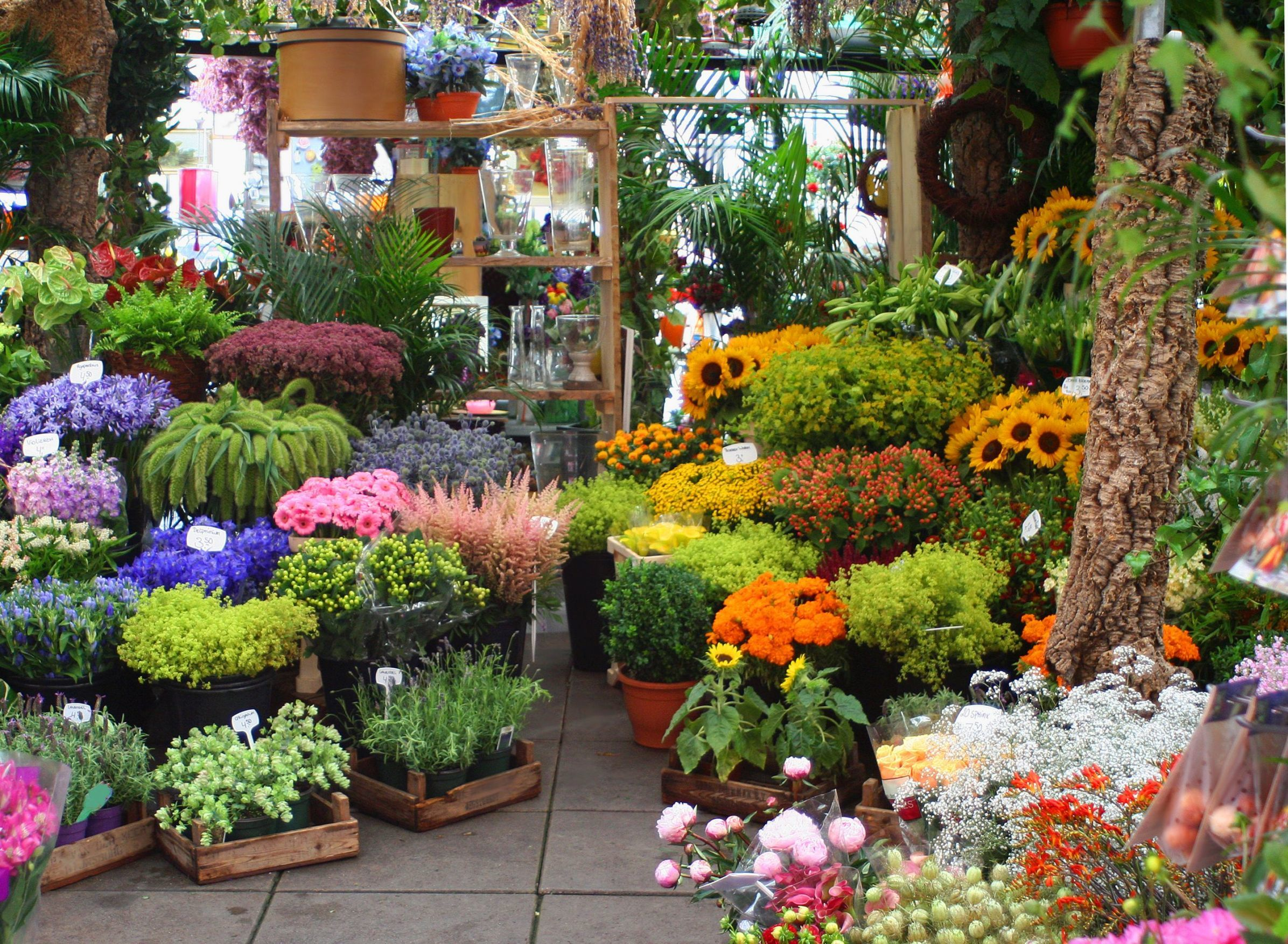 How to Choose the Best Wedding Florist and Flowers Image 6