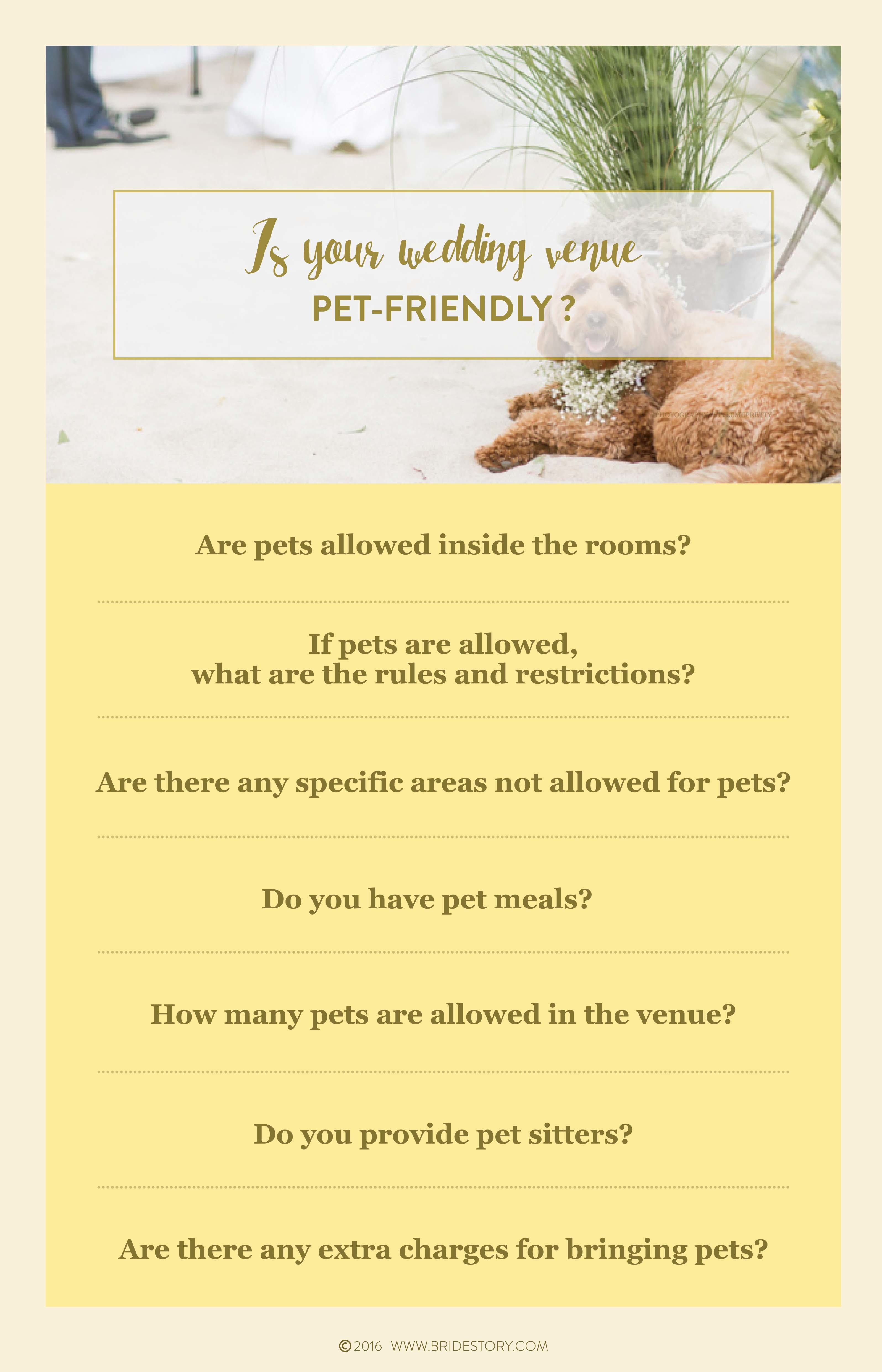 How to Involve Pets in Your Wedding Image 4