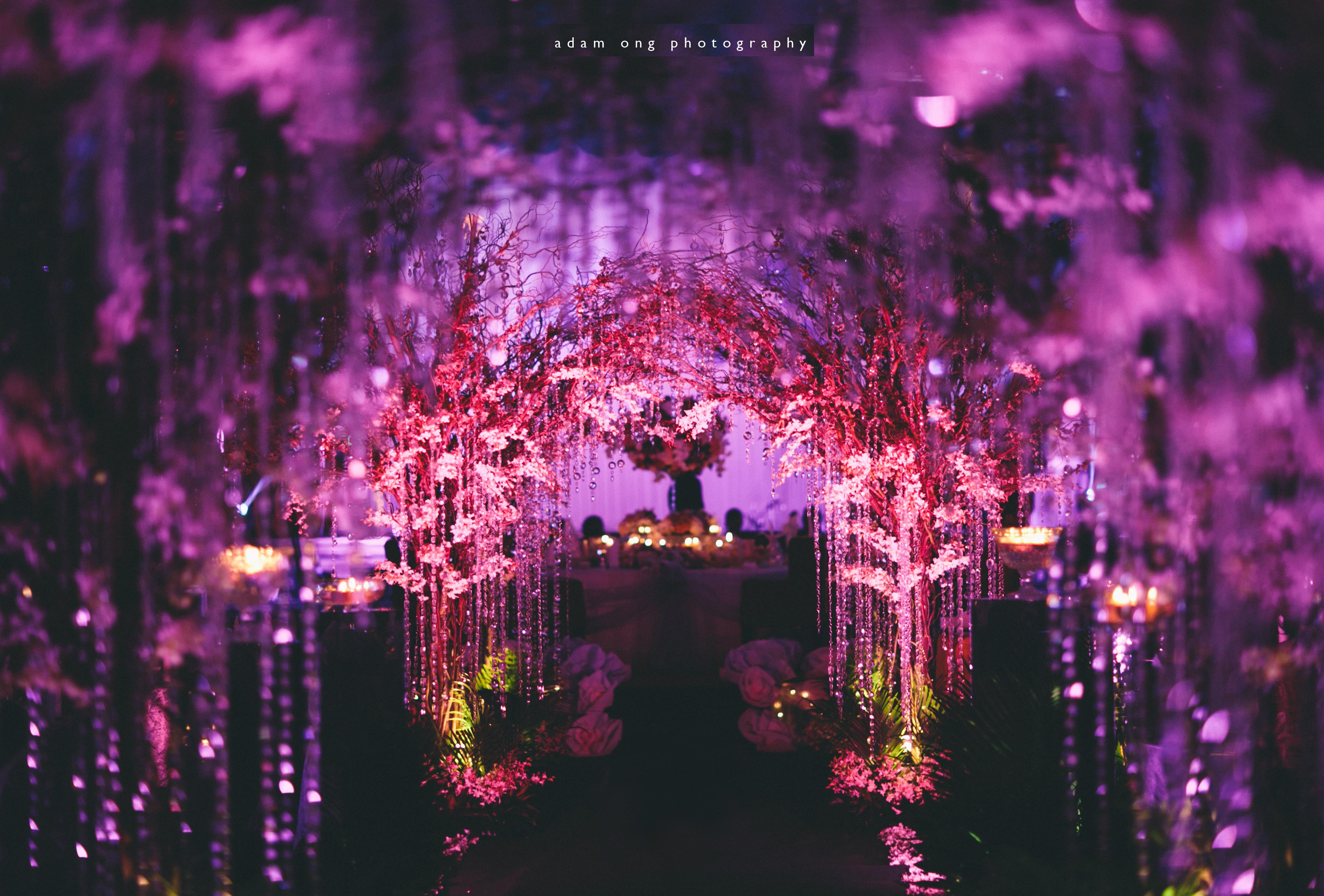 Wedding Vendors & Inspirations | Bridestory.com