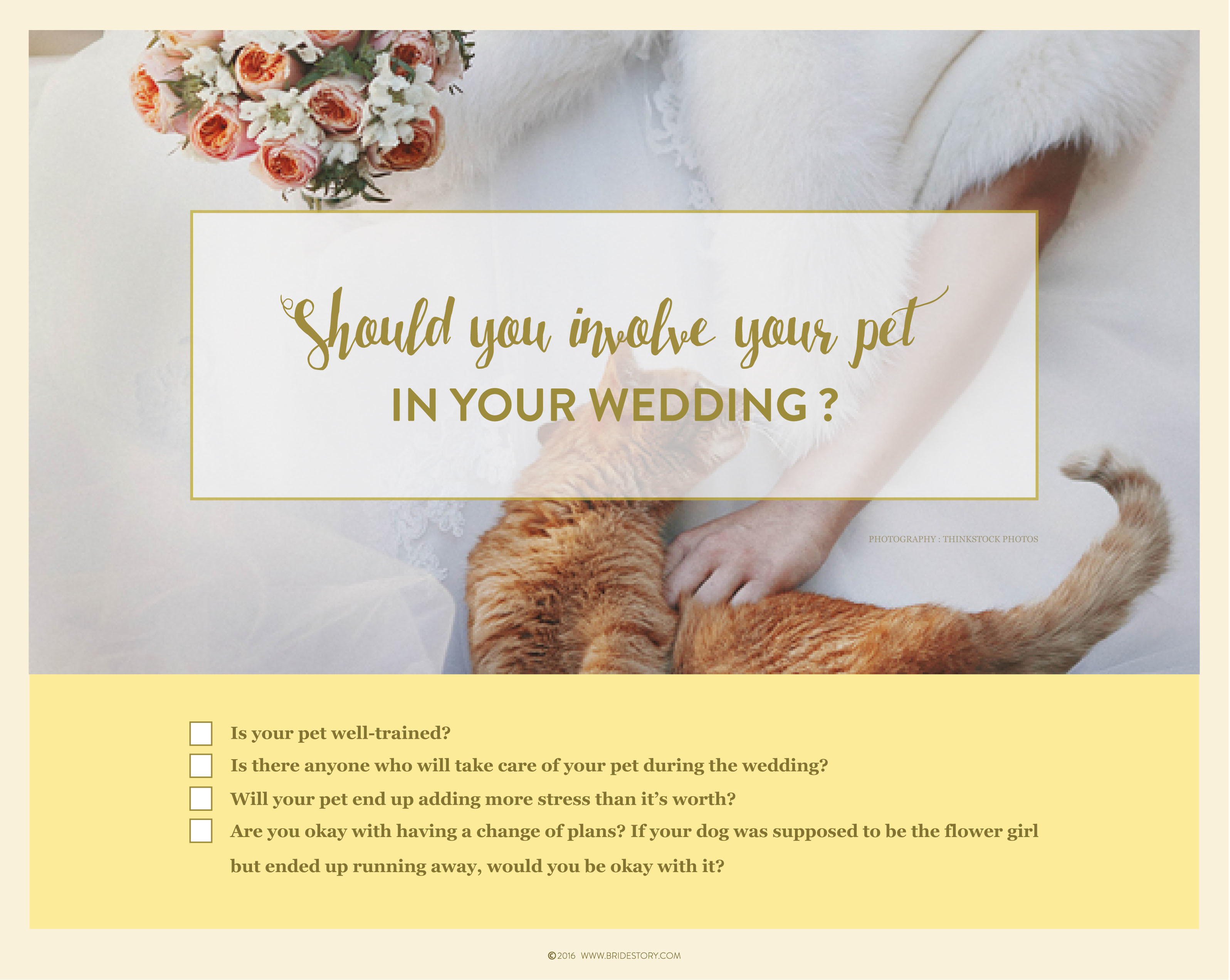 How to Involve Pets in Your Wedding Image 3