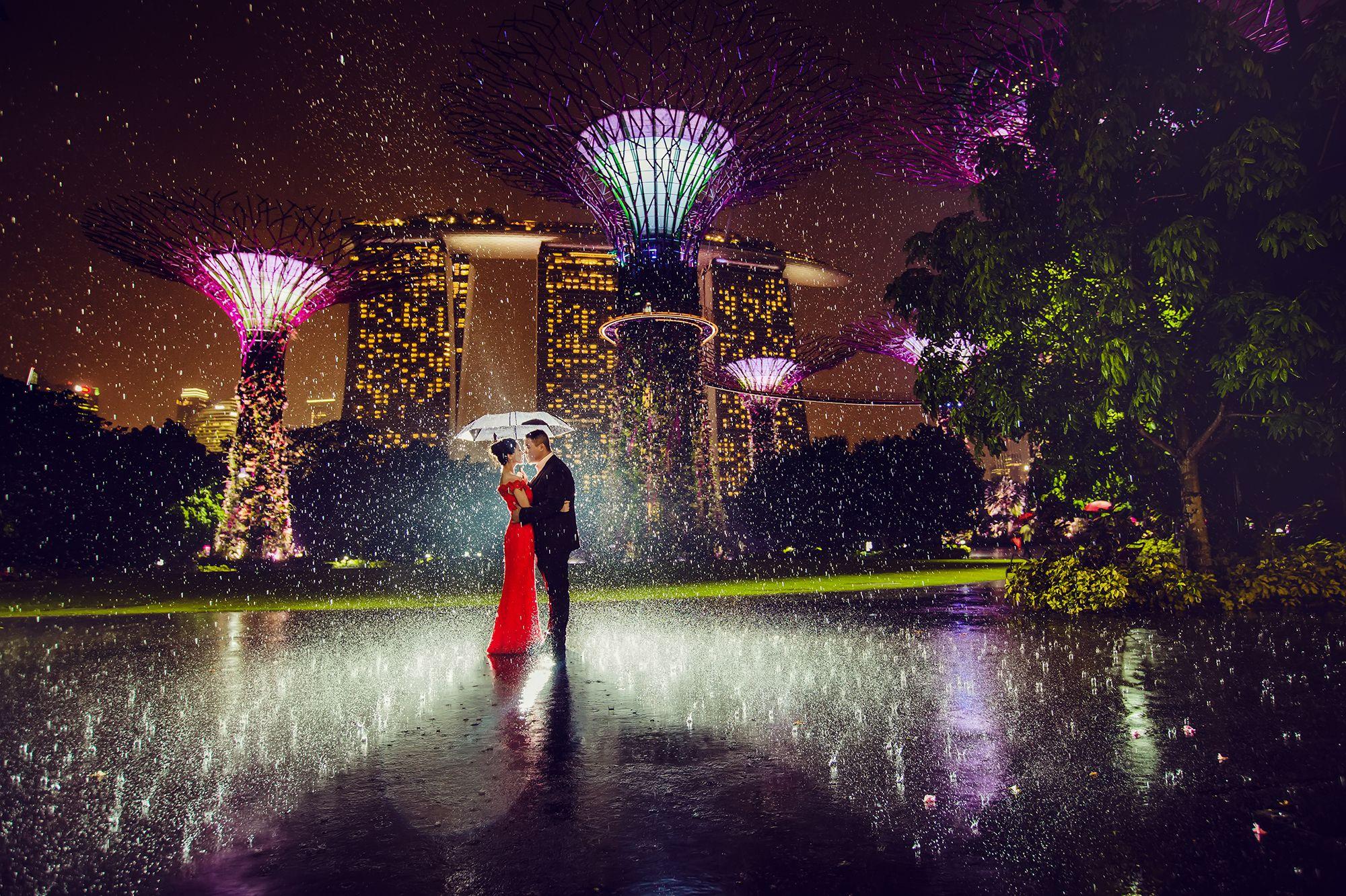 gardens by the bay by bv wedding photography bridestorycom