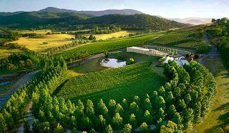16_Yarra_Valley_-_via_wineyarravalley_n9k7k4.jpg