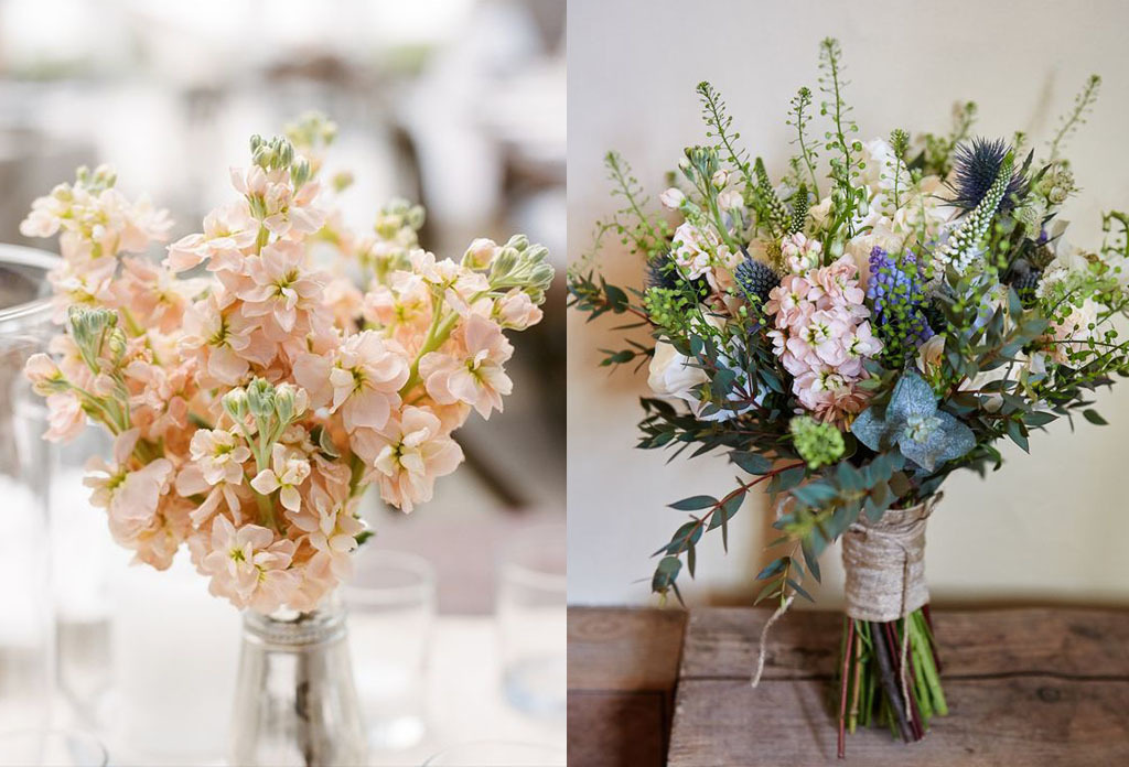 10 Beautiful Flowers to Adorn Your Summer Wedding Image 17